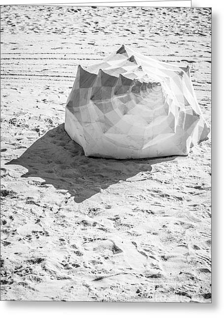 Giant Shell Sculpture 4  - Key West - Black And White Greeting Card