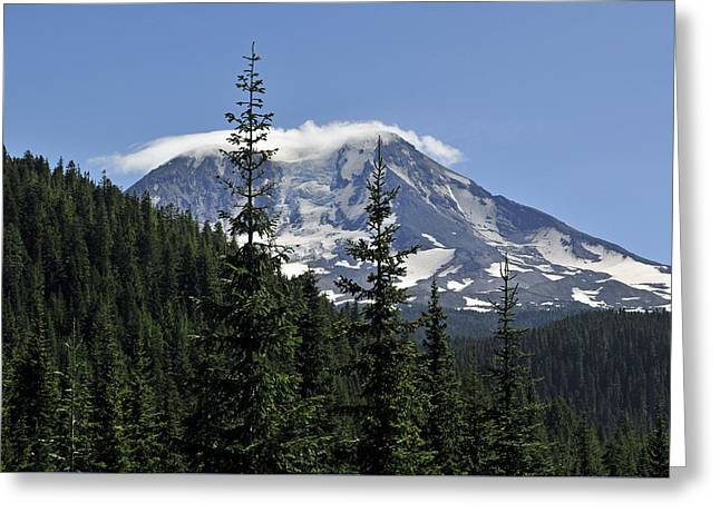 Gifford Pinchot National Forest And Mt. Adams Greeting Card