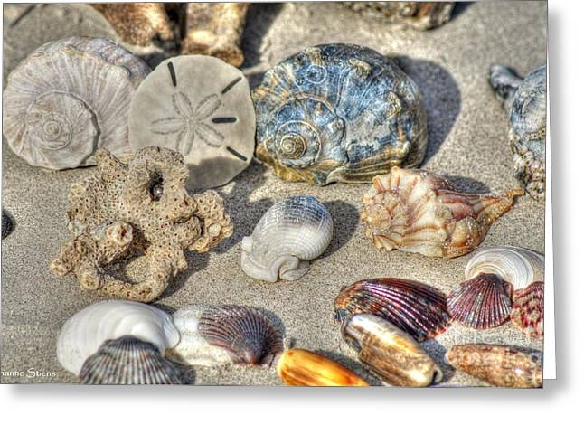 Gifts Of The Tides Greeting Card by Benanne Stiens