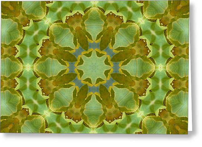Greeting Card featuring the photograph Ginkgo Leaf Kaleidoscope Mandala by MM Anderson