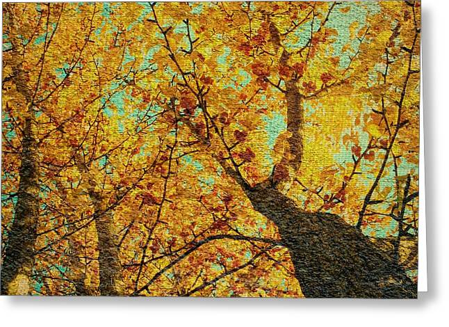 Ginkgo Tree  Greeting Card by Chris Berry