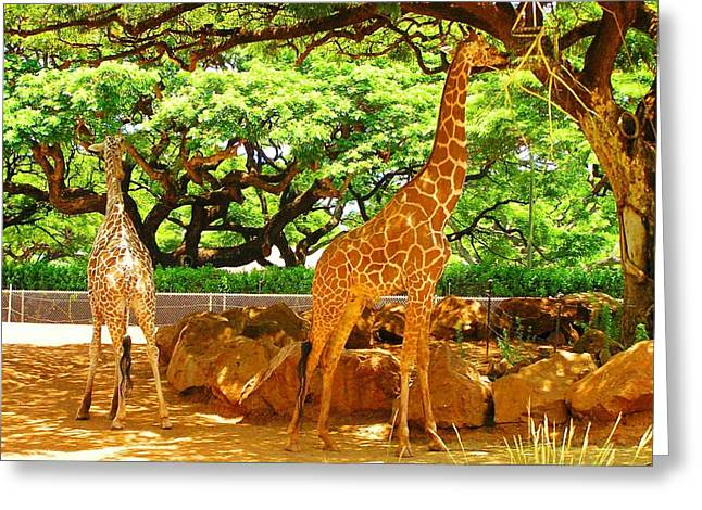 Giraffes Greeting Card by Oleg Zavarzin