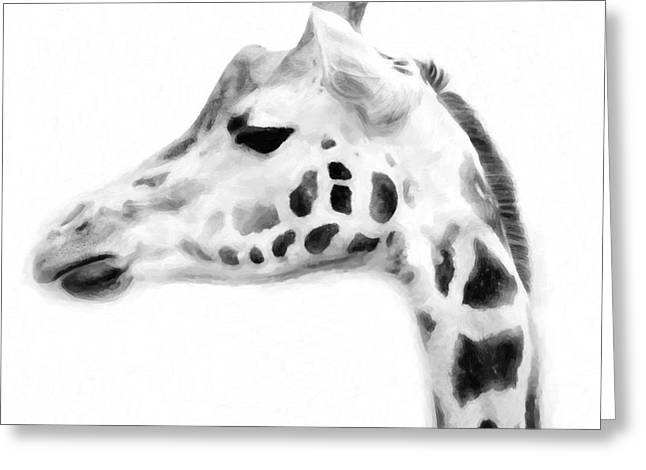 Giraffe On White Background Greeting Card by Tommytechno Sweden