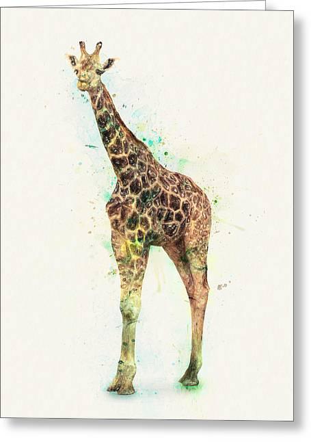 Giraffe Study Greeting Card by Taylan Apukovska