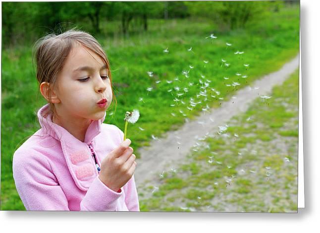 Girl Blowing Dandelion Seeds Greeting Card