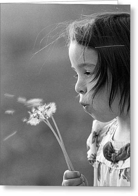 Girl Blowing On Dandelion C.1970s Greeting Card