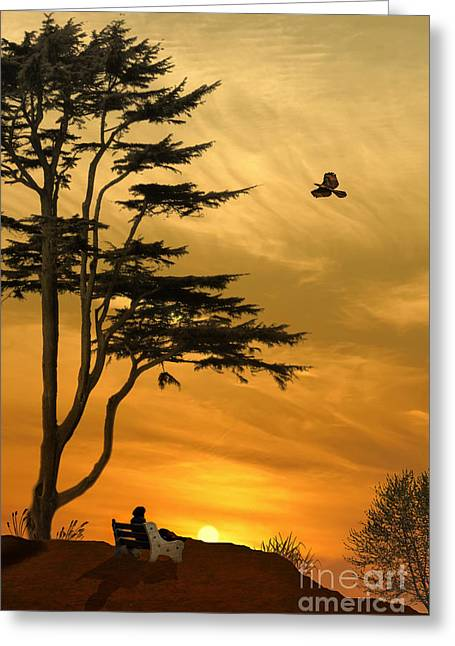 Girl On A Bench At Sunset Greeting Card by Tom York Images