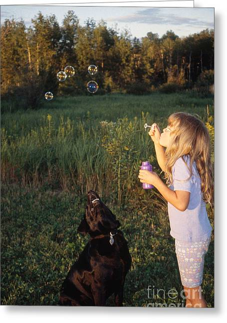 Girl With Black Labrador Greeting Card
