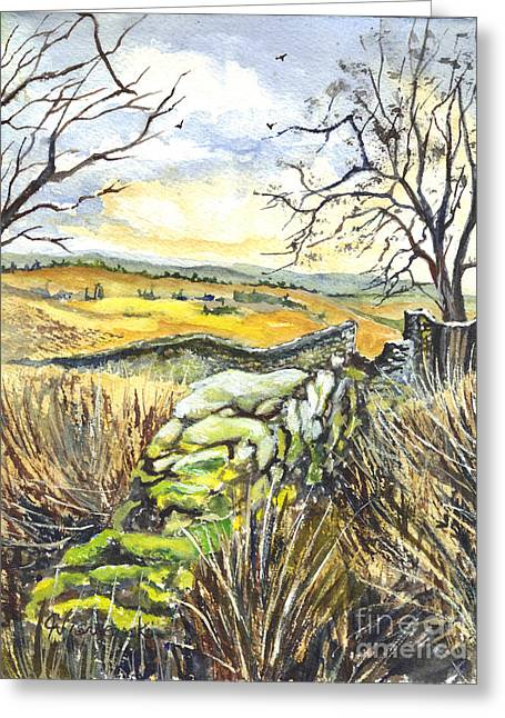 Gisburn Forest Lancashire Uk Greeting Card by Carol Wisniewski