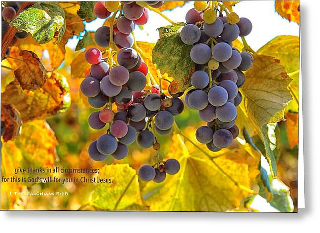 Give Thanks Always Greeting Card by Lynn Hopwood