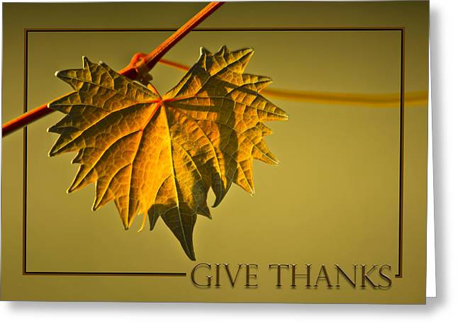 Give Thanks Greeting Card by Carolyn Marshall