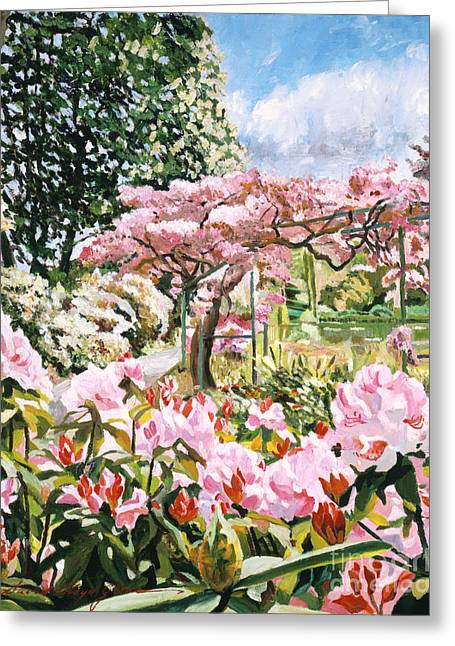 Giverny Rhododendrons Greeting Card by David Lloyd Glover