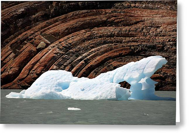 Glacial Groove Marks Greeting Card by Steve Allen/science Photo Library