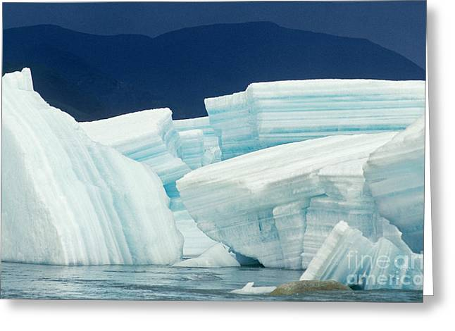 Glacial Ice Greeting Card by Art Wolfe