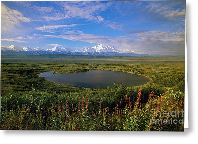 Glacial Kettle Pond And  Denali Greeting Card