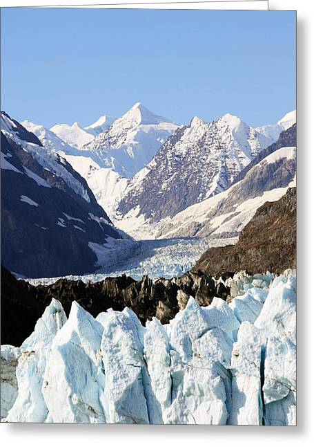 Greeting Card featuring the photograph Glacier Bay Alaska by Sonya Lang
