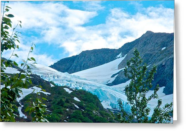 Glacier In Williwaw Campground In Chugach  National Forest-ak Greeting Card