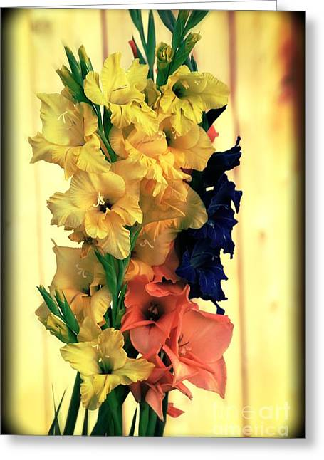 Greeting Card featuring the photograph Gladiolus  2013 by Marjorie Imbeau