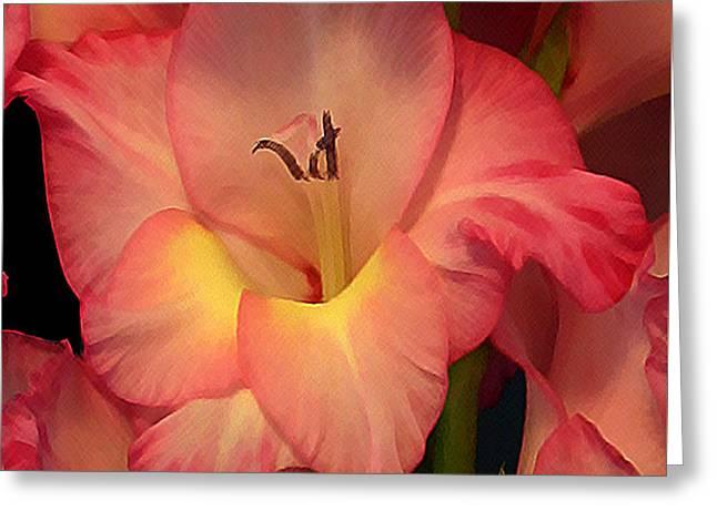 Gladiolus  Greeting Card by Annlynn Ward