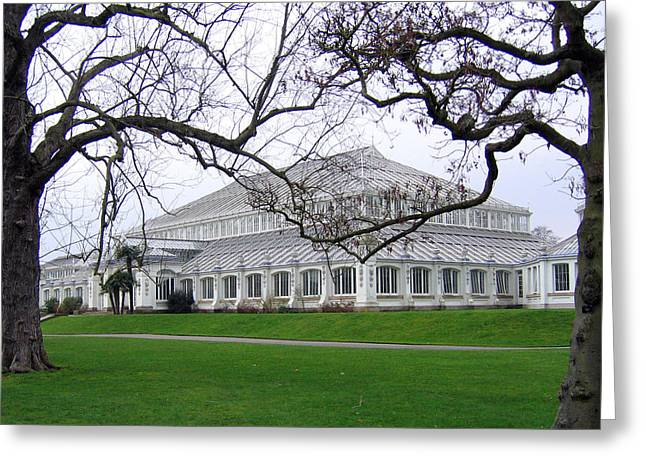 Glass House At Kew Gardens Greeting Card