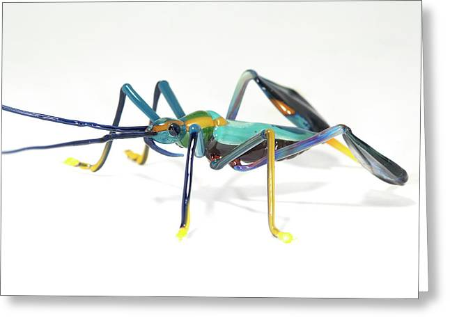 Glass Insect Greeting Card by Tomasz Litwin