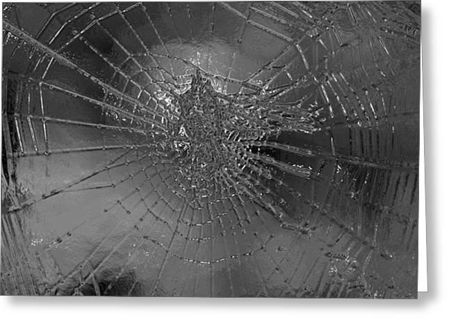 Glass Spider Greeting Card by Carol Lynch