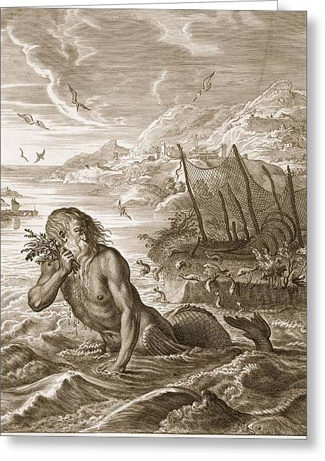Glaucus Turned Into A Sea-god, 1731 Greeting Card by Bernard Picart