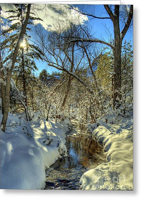 Gleaming Sun On Snowy Streambed Greeting Card by K D Graves