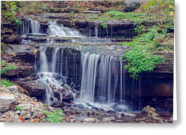 Glen Falls Park Greeting Card by Guy Whiteley