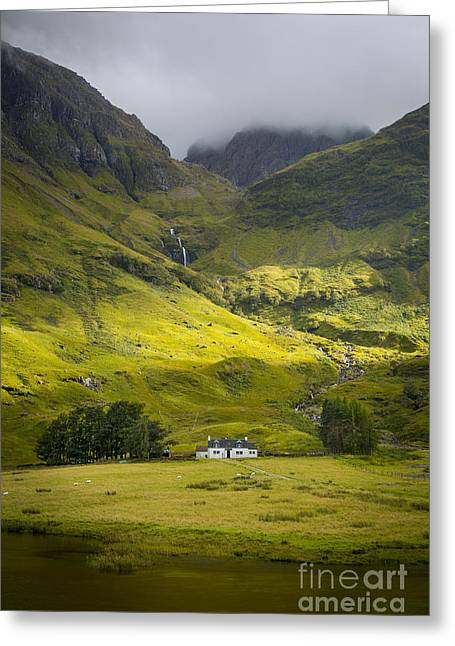 Glencoe Highlands Greeting Card by Brian Jannsen