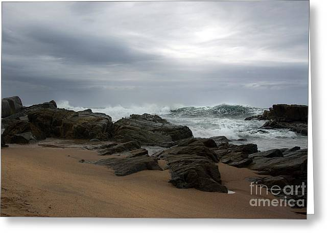 Greeting Card featuring the photograph Anticipation by Glenda Wright