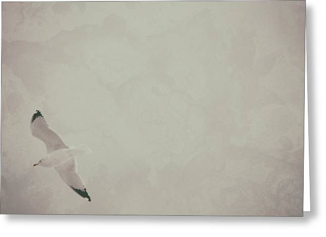 Gliding Thru Life Greeting Card by Karol Livote
