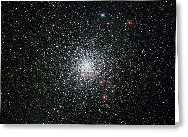 Globular Star Cluster M4 Greeting Card by European Southern Observatory