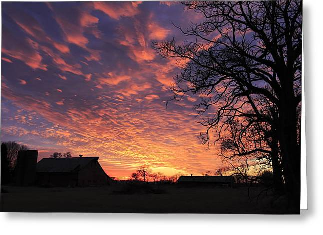 Glorious Sunset Greeting Card by Andrea Kappler