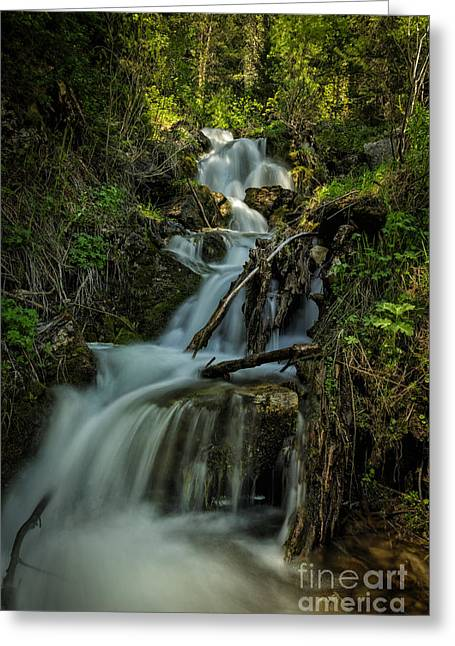 Glow At The Top Greeting Card by Mitch Johanson