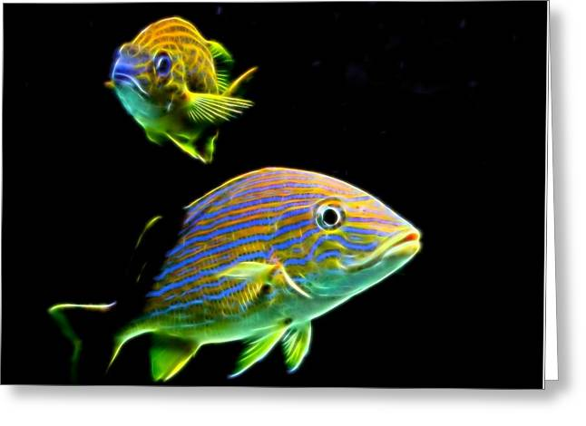 Glow Fish Greeting Card by Judy Vincent