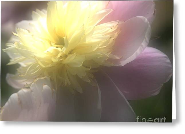 Glow Greeting Card by Kathleen Struckle