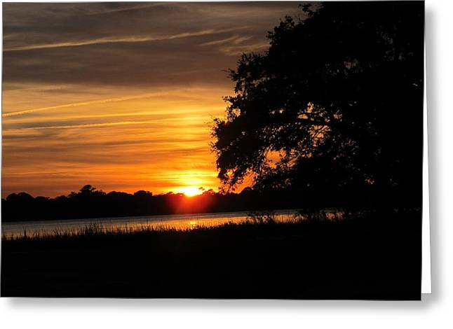 Greeting Card featuring the photograph Glow Of Night by Joetta Beauford