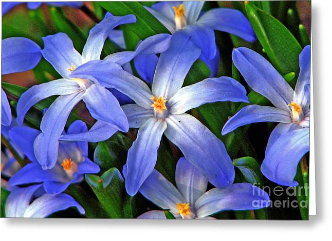 Glowing Blue Greeting Card by Chris Anderson