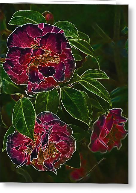 Glowing Camellia Greeting Card