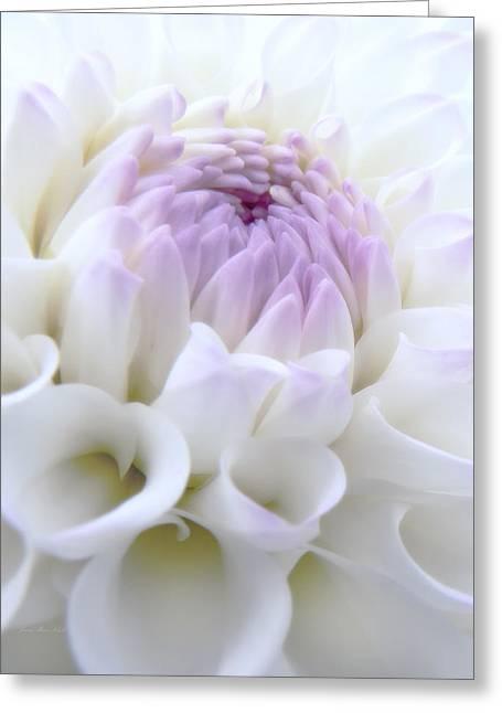 Glowing Dahlia Flower Greeting Card by Jennie Marie Schell