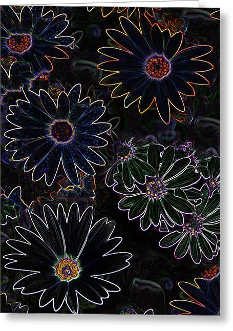 Glowing Daisies Greeting Card