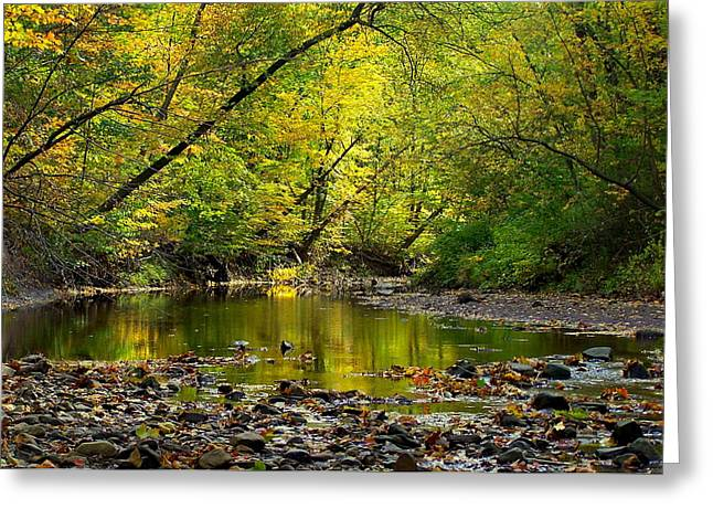 Glowing Haven Greeting Card by Frozen in Time Fine Art Photography