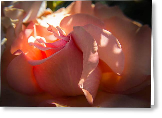 Greeting Card featuring the photograph Glowing Heart by Patricia Babbitt