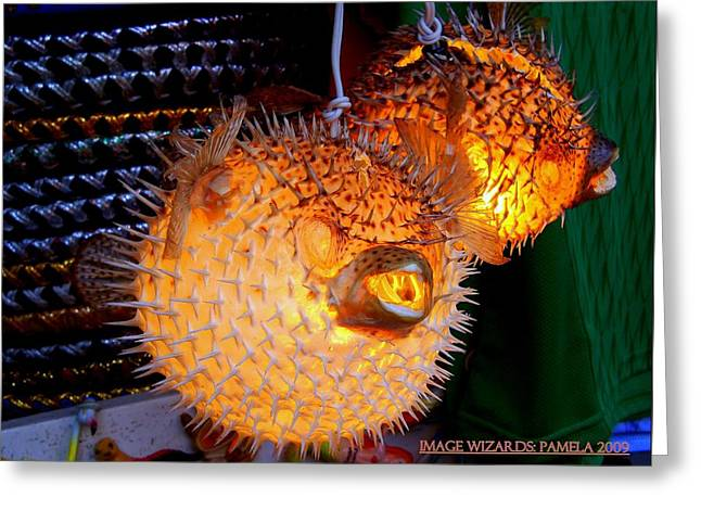 Glowing Pufferfish Greeting Card by ARTography by Pamela Smale Williams