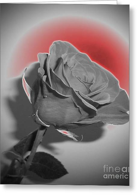 Glowing Rose Greeting Card by Minding My  Visions by Adri and Ray