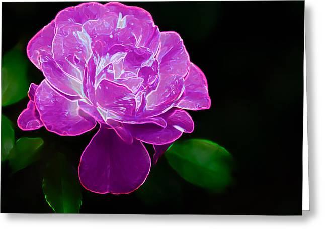 Glowing Rose II Greeting Card