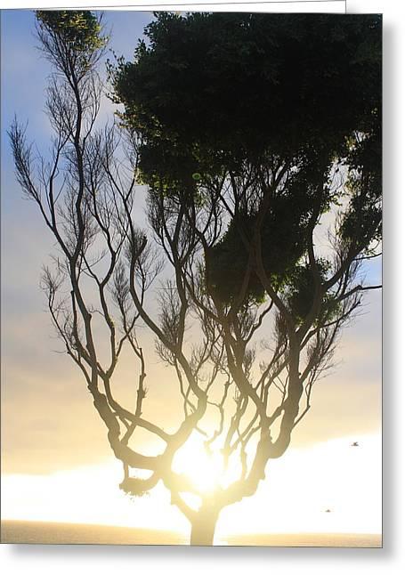 Glowing Tree Greeting Card