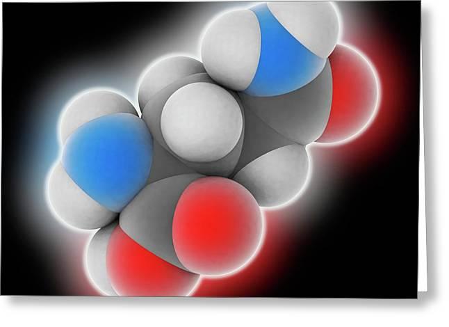 Glutamine Molecule Greeting Card by Laguna Design