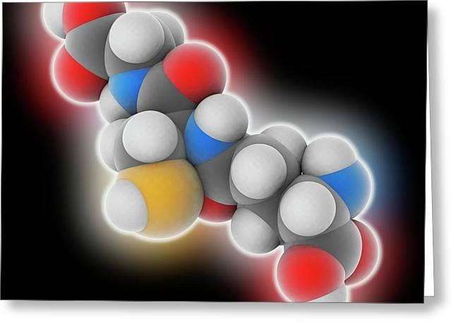 Glutathione Molecule Greeting Card by Laguna Design